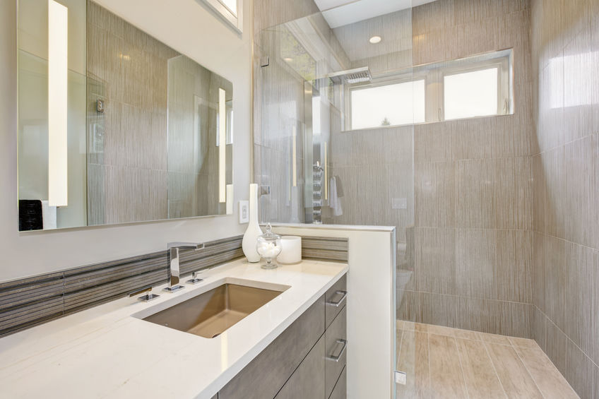 Walk In Shower Vs Bathtub Pros And Cons Powered By Pros
