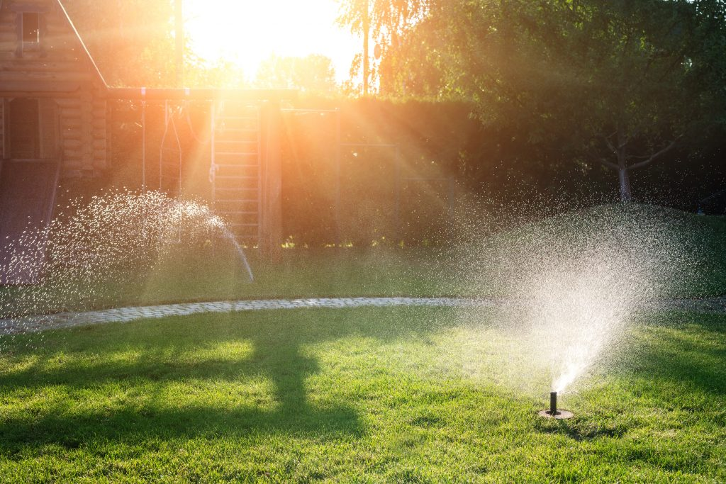 7 Easy Home Renovations to Save Water